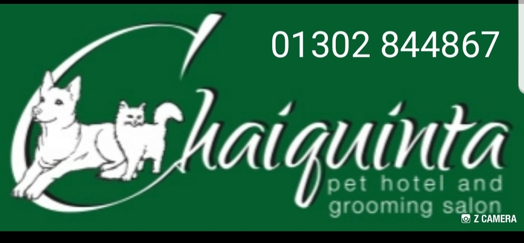 Chaiquinta Pet Hotel and Grooming Salon for Cats and Dogs Photo