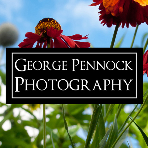 George Pennock Photography Photo